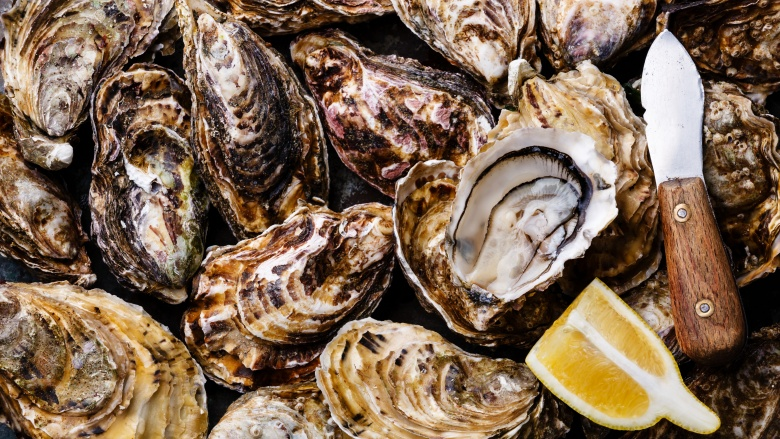 Are oysters still alive when you eat them Are oysters still alive when you eat them new images
