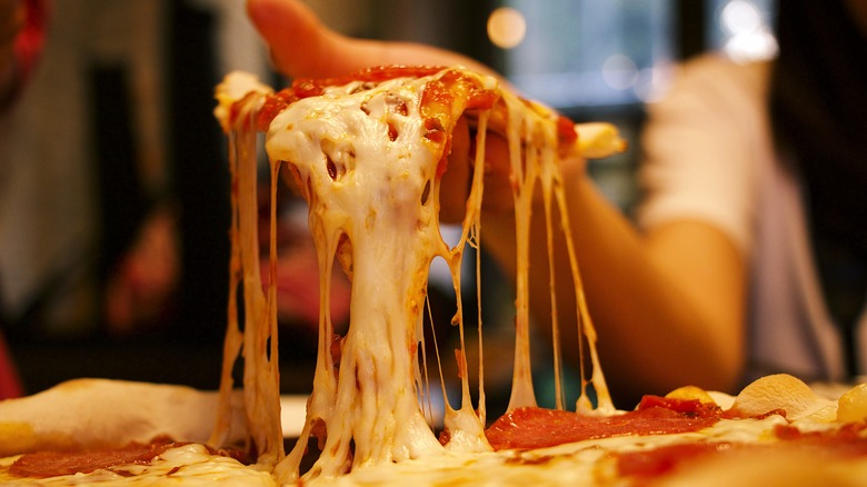 Things Every Pizza Lover Needs Asap