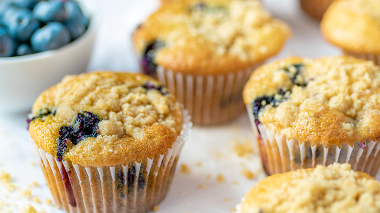 blueberry muffins on display