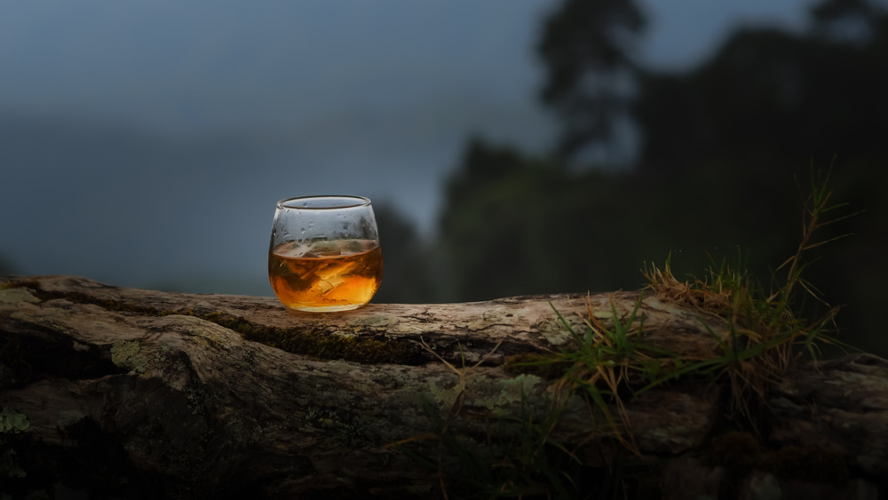 Glass of whiskey on a log