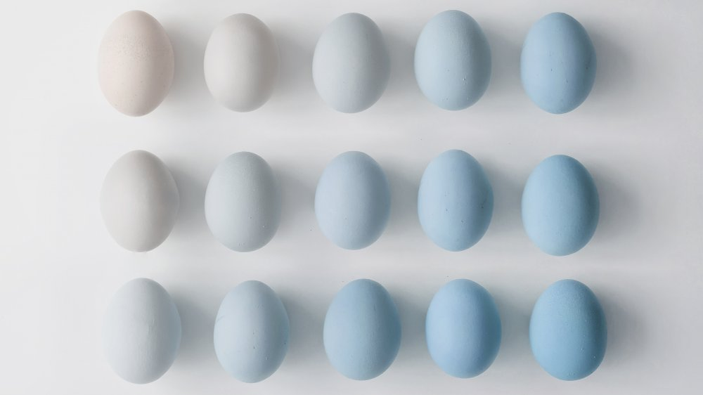 eggs of different shades