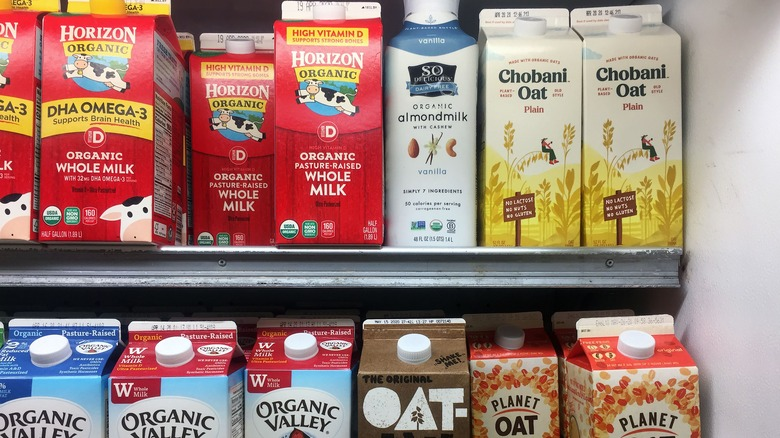 Is Oat Milk Better For You Than Dairy Milk?