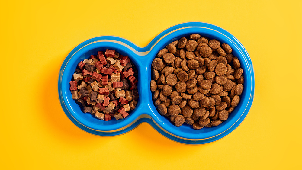 Pet food from dollar store in bowl