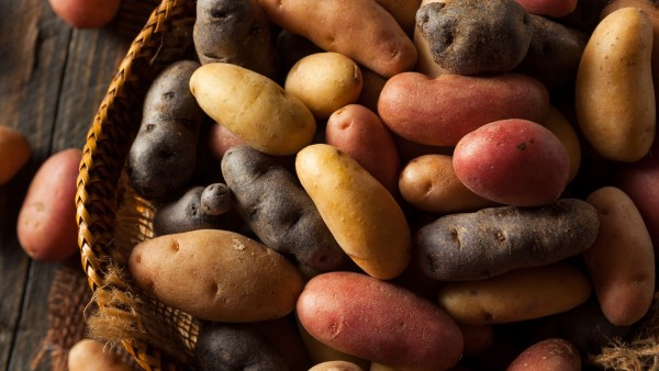 The difference between every kind of potato