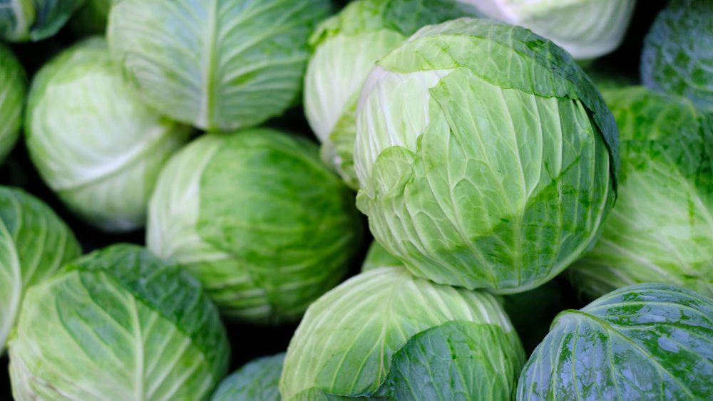 The Real Difference Between Red And Green Cabbage