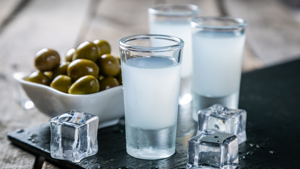 Shots of ouzo on a table with ice and olives