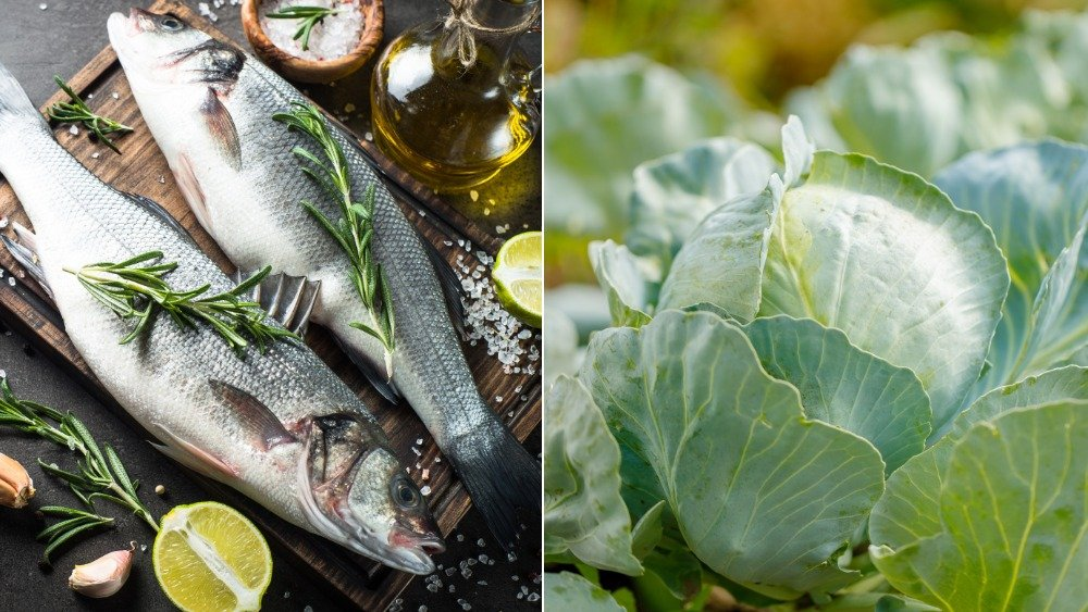 Sea bass and cabbage