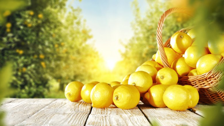 The untold truth of lemons