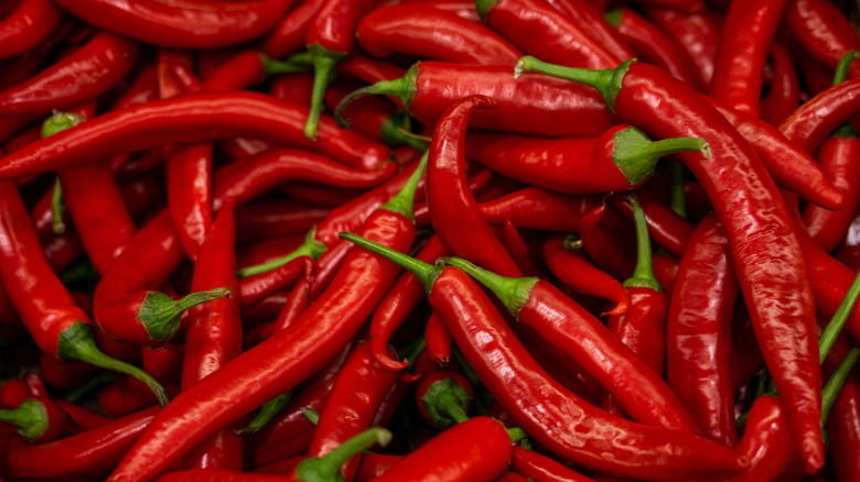 Pile of red chili peppers