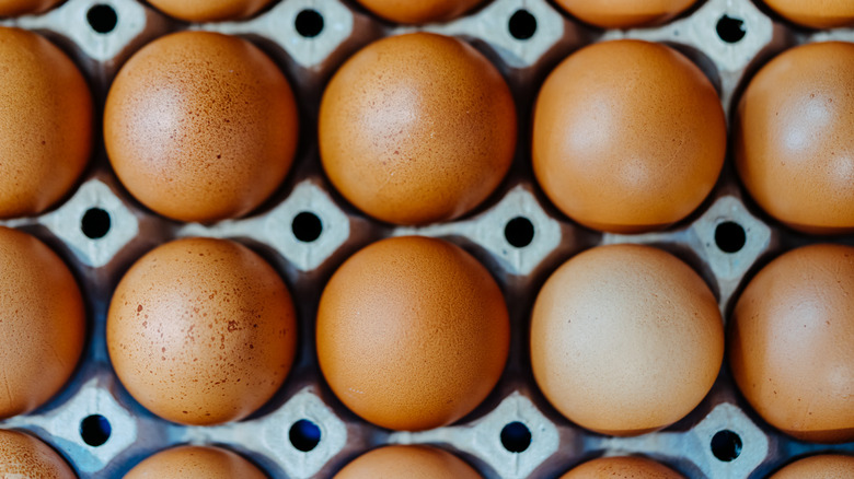 Close up photo of rows of brown eggs in carton