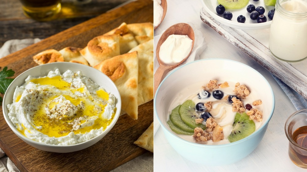 A bowl of labneh and a bowl of Greek yogurt