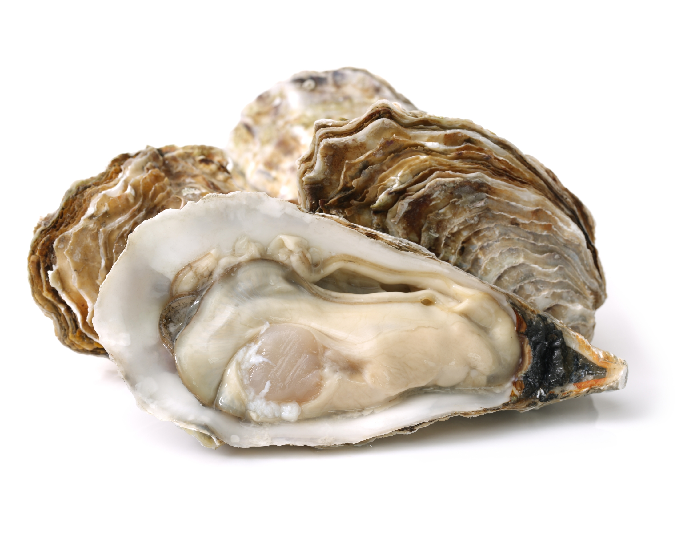 The truth about oysters